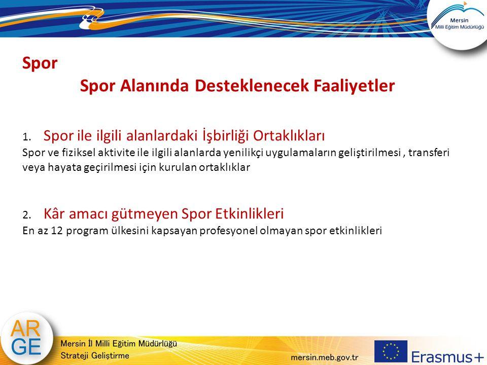 Spor Alanında Desteklenecek Faaliyetler