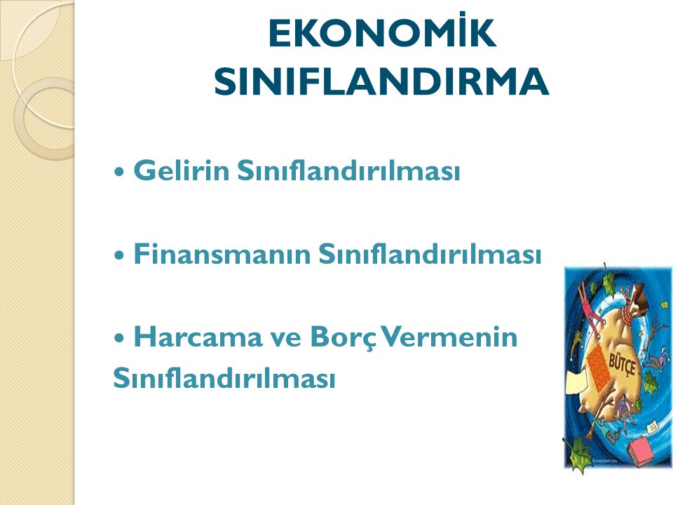 EKONOMİK SINIFLANDIRMA