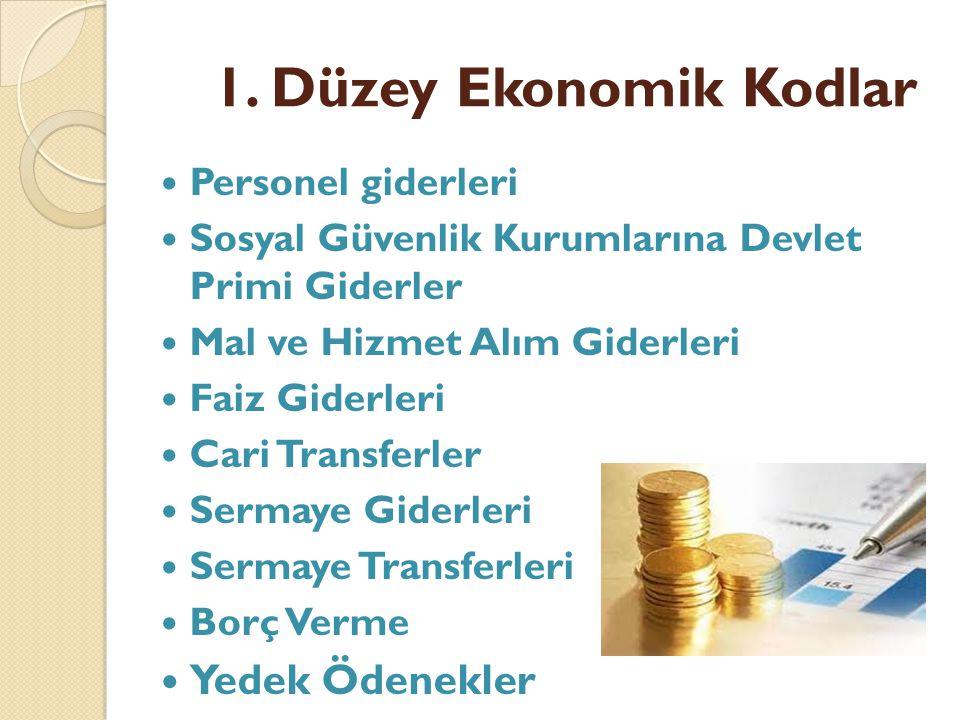 1. Düzey Ekonomik Kodlar Yedek Ödenekler Personel giderleri