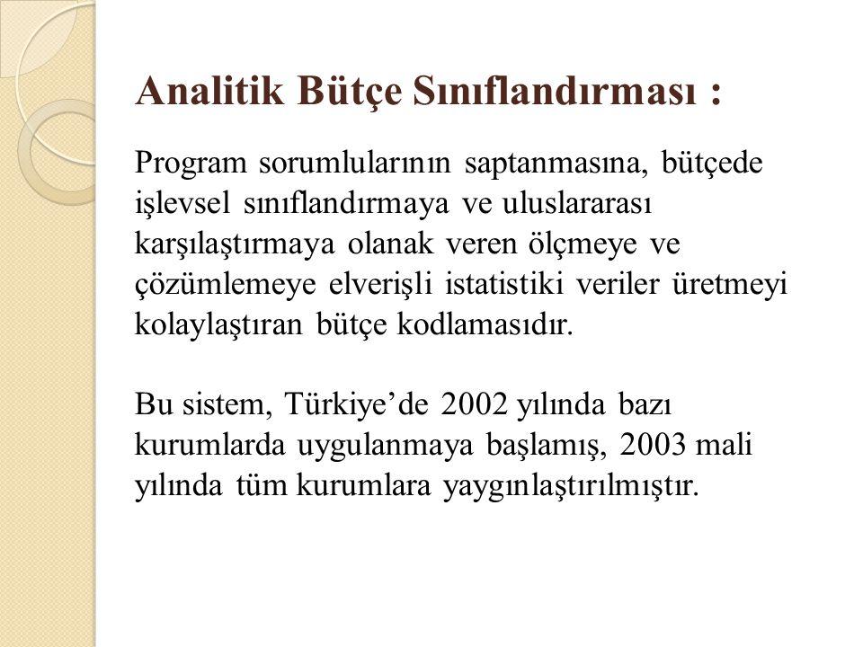 Analitik Bütçe Sınıflandırması :
