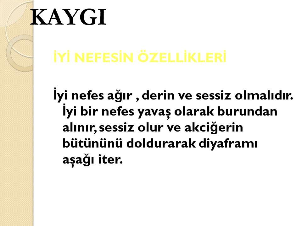 KAYGI