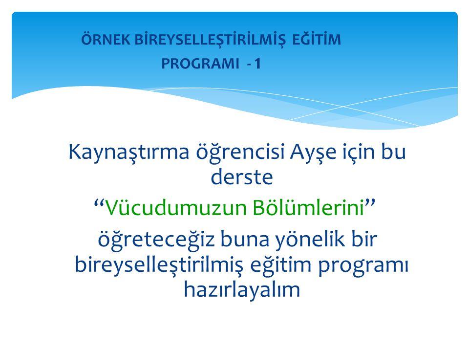 ÖRNEK BİREYSELLEŞTİRİLMİŞ EĞİTİM PROGRAMI - 1