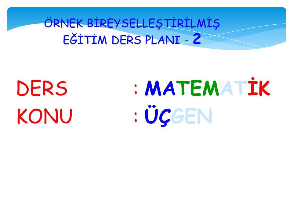 ÖRNEK BİREYSELLEŞTİRİLMİŞ EĞİTİM DERS PLANI - 2