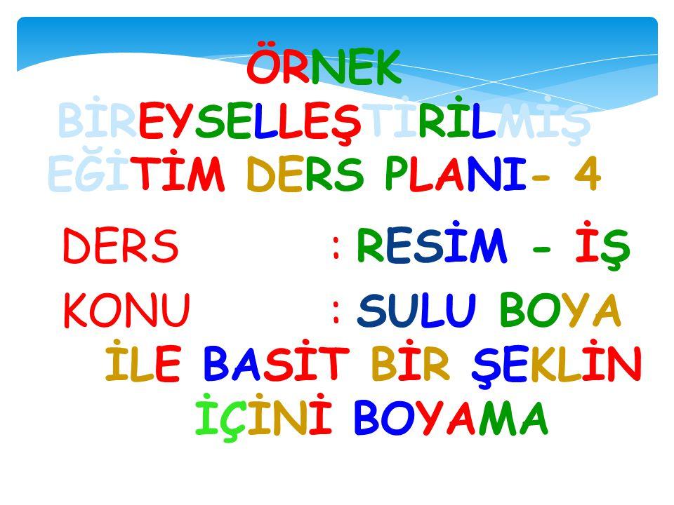 ÖRNEK BİREYSELLEŞTİRİLMİŞ EĞİTİM DERS PLANI- 4
