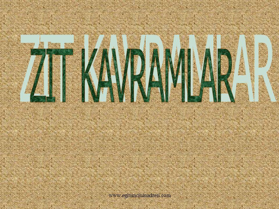 ZIT KAVRAMLAR www.egitimcininadresi.com