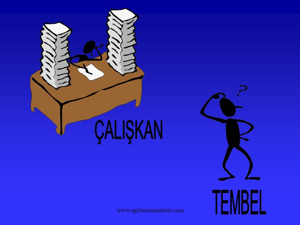 ÇALIŞKAN TEMBEL www.egitimcininadresi.com