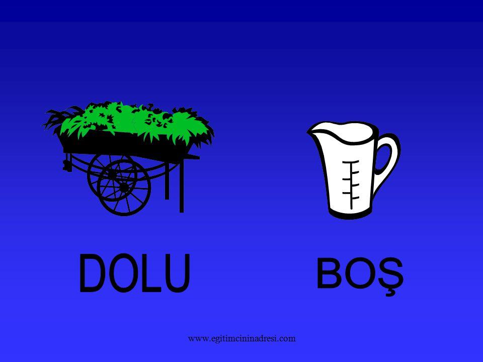 DOLU BOŞ www.egitimcininadresi.com