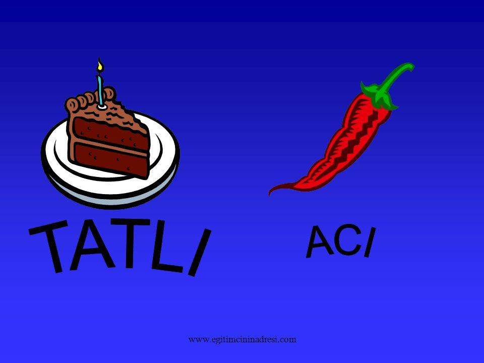 ACI TATLI www.egitimcininadresi.com
