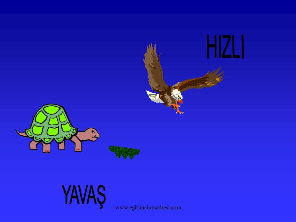 HIZLI YAVAŞ www.egitimcininadresi.com