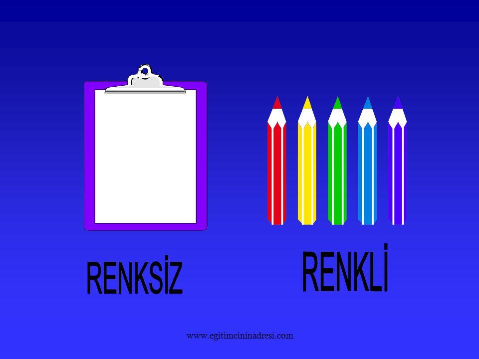 RENKLİ RENKSİZ www.egitimcininadresi.com