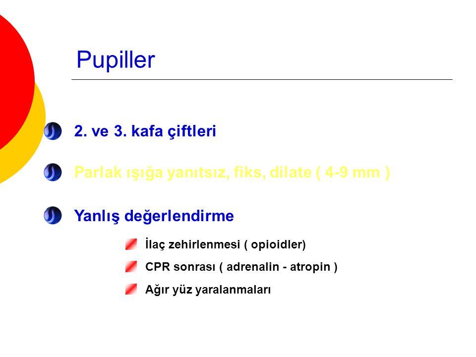 Pupiller 2. ve 3. kafa çiftleri