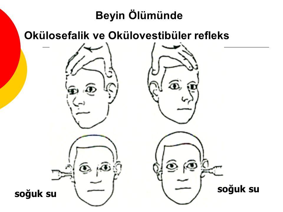 Okülosefalik ve Okülovestibüler refleks