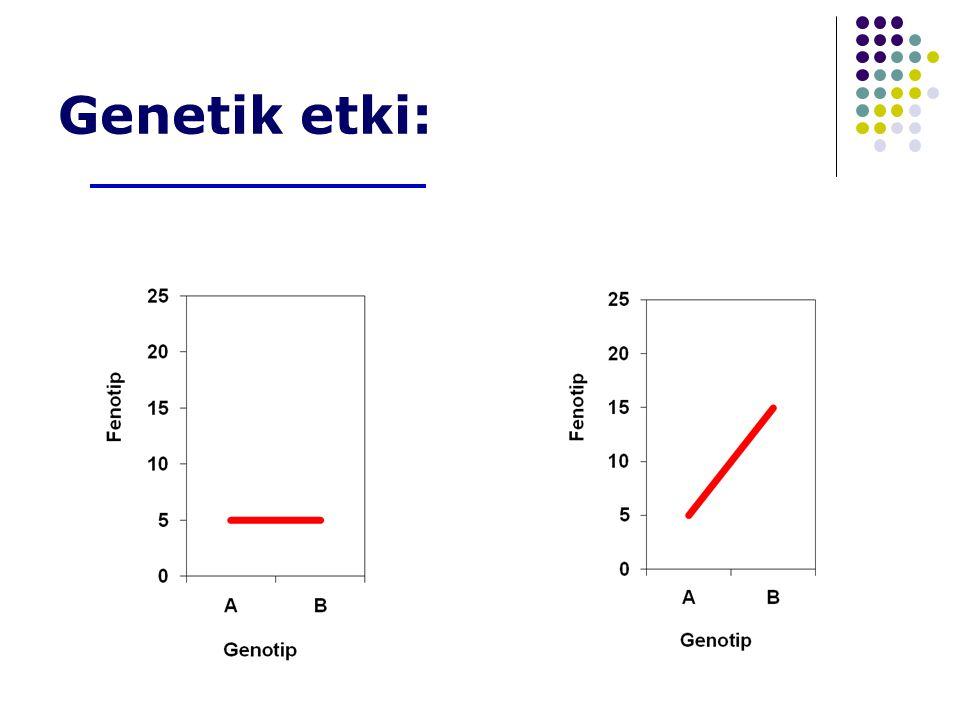 Genetik etki: