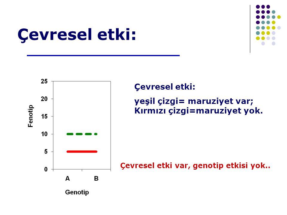 Çevresel etki: Çevresel etki: yeşil çizgi= maruziyet var;