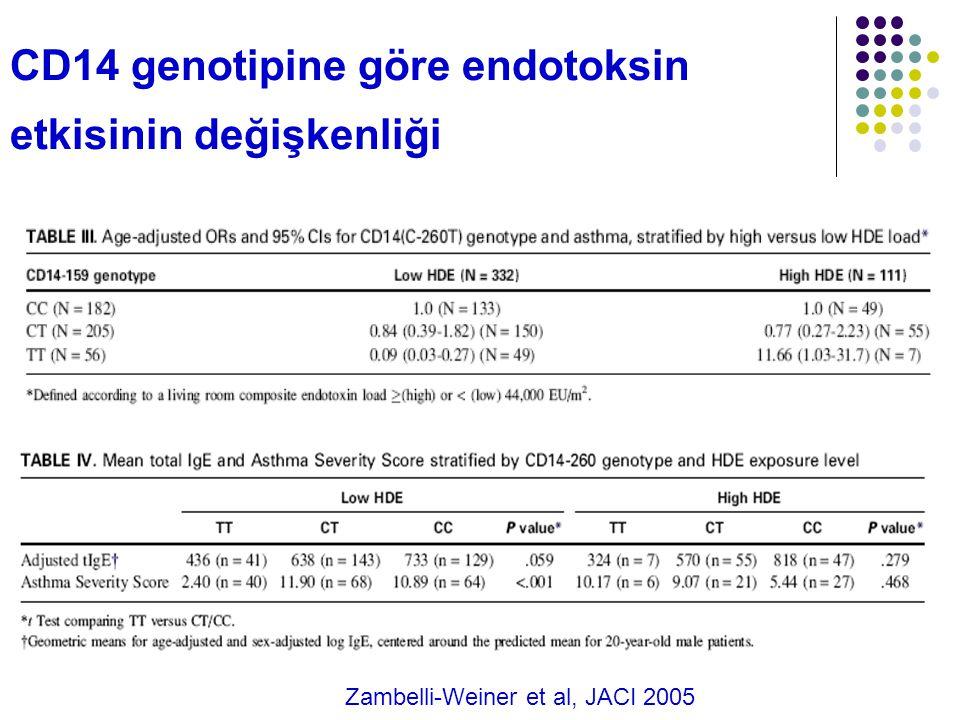 CD14 genotipine göre endotoksin etkisinin değişkenliği