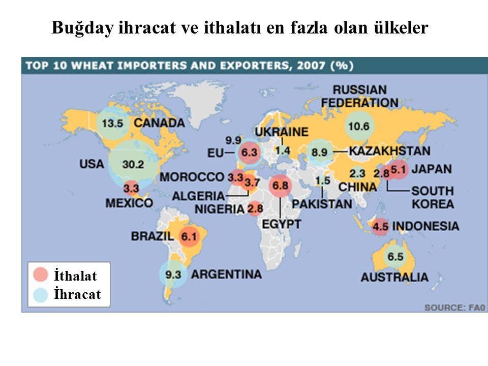 Buğday ihracat ve ithalatı en fazla olan ülkeler