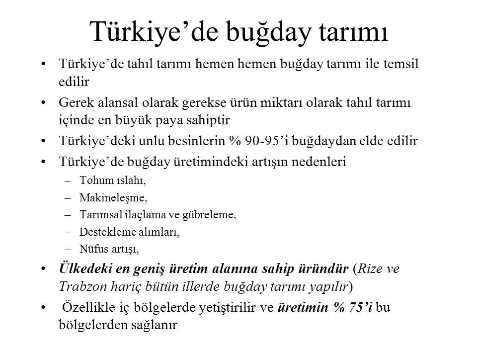 Türkiye'de buğday tarımı