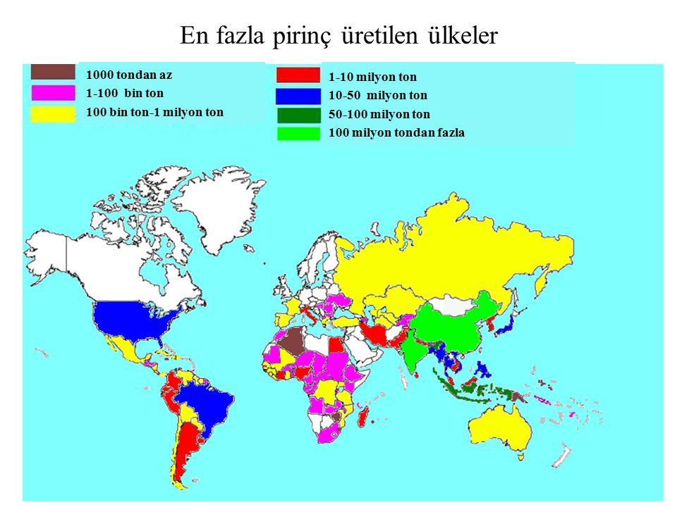 En fazla pirinç üretilen ülkeler