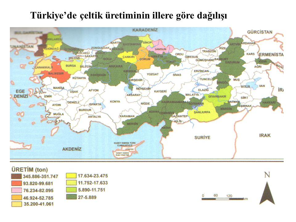 Türkiye'de çeltik üretiminin illere göre dağılışı