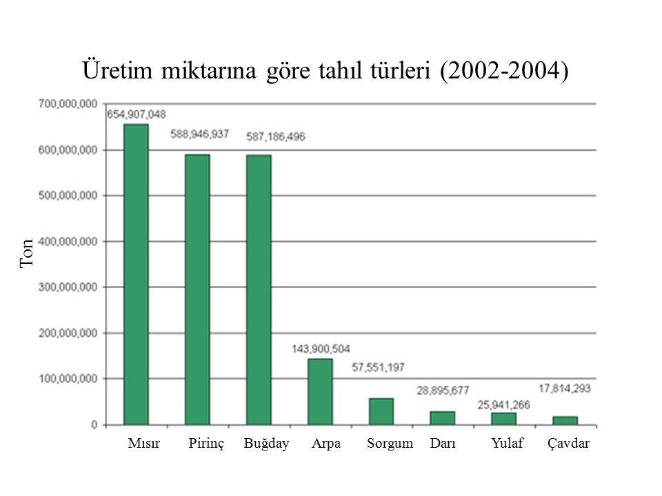 Üretim miktarına göre tahıl türleri (2002-2004)
