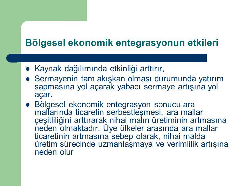 Bölgesel ekonomik entegrasyonun etkileri