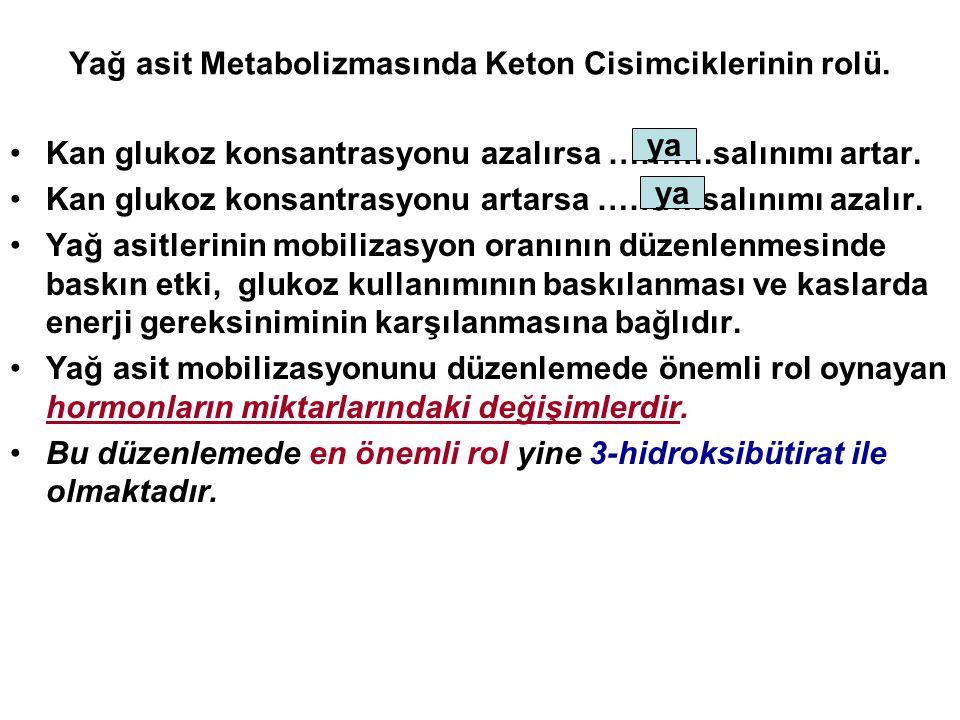 Yağ asit Metabolizmasında Keton Cisimciklerinin rolü.