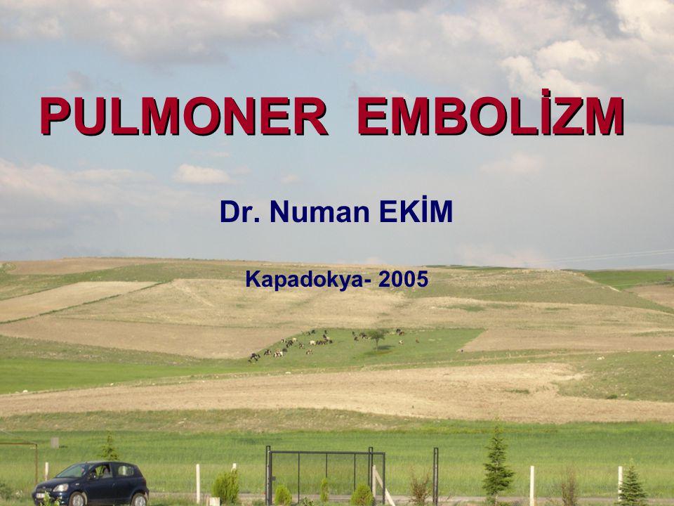 Dr. Numan EKİM Kapadokya- 2005