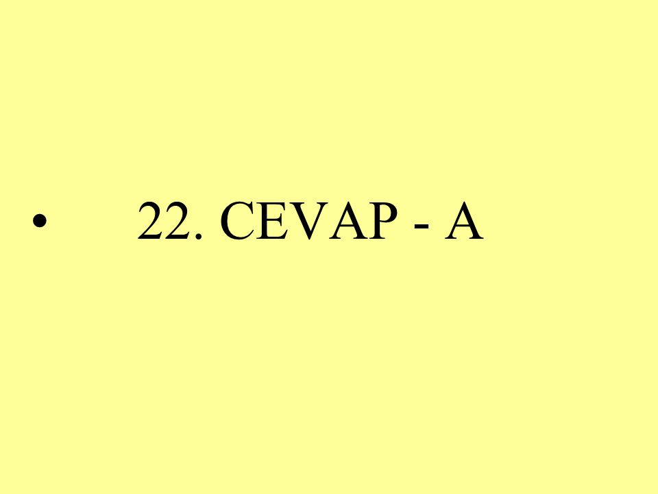 22. CEVAP - A