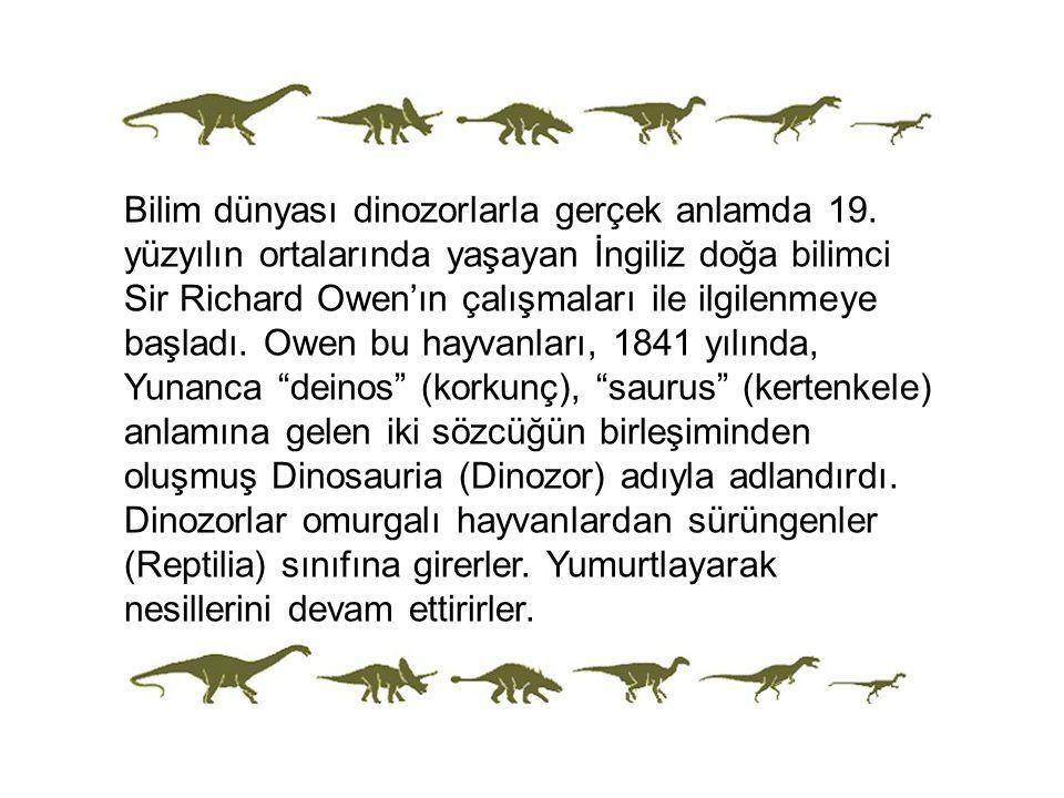 Bilim dünyası dinozorlarla gerçek anlamda 19