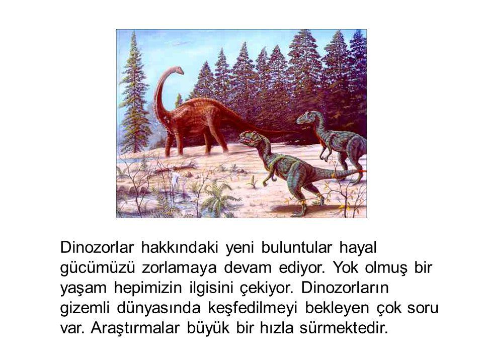 Dinozorlar hakkındaki yeni buluntular hayal gücümüzü zorlamaya devam ediyor.