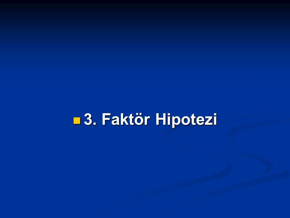 3. Faktör Hipotezi