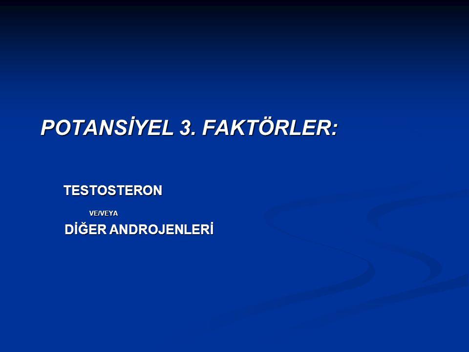 POTANSİYEL 3. FAKTÖRLER: TESTOSTERON
