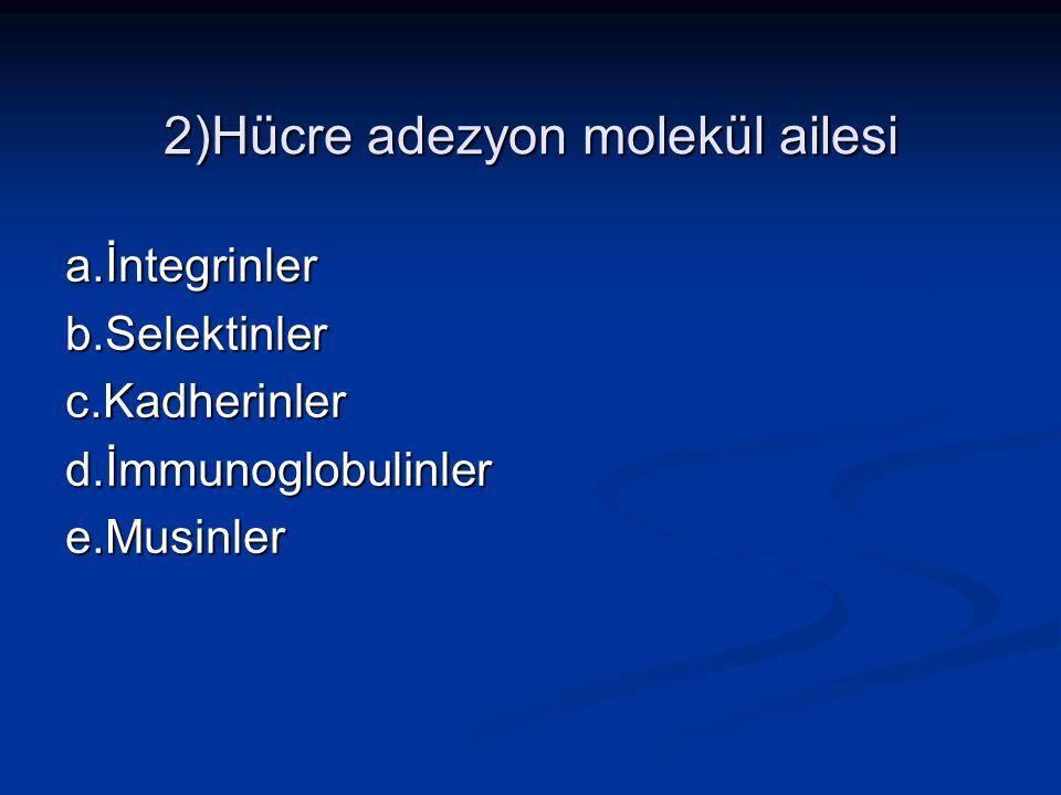 2)Hücre adezyon molekül ailesi