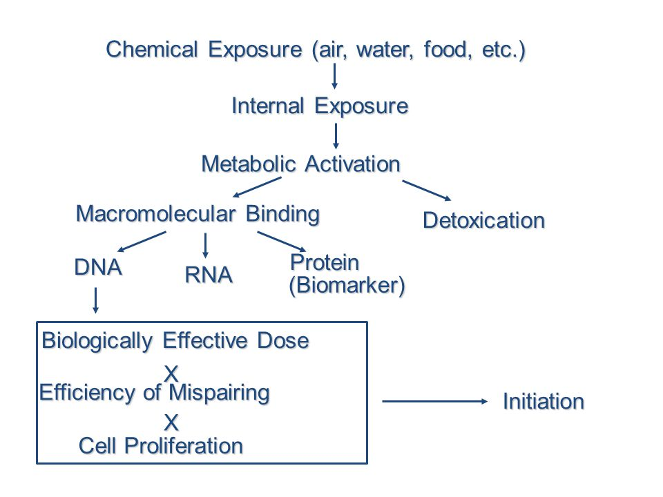 Chemical Exposure (air, water, food, etc.)