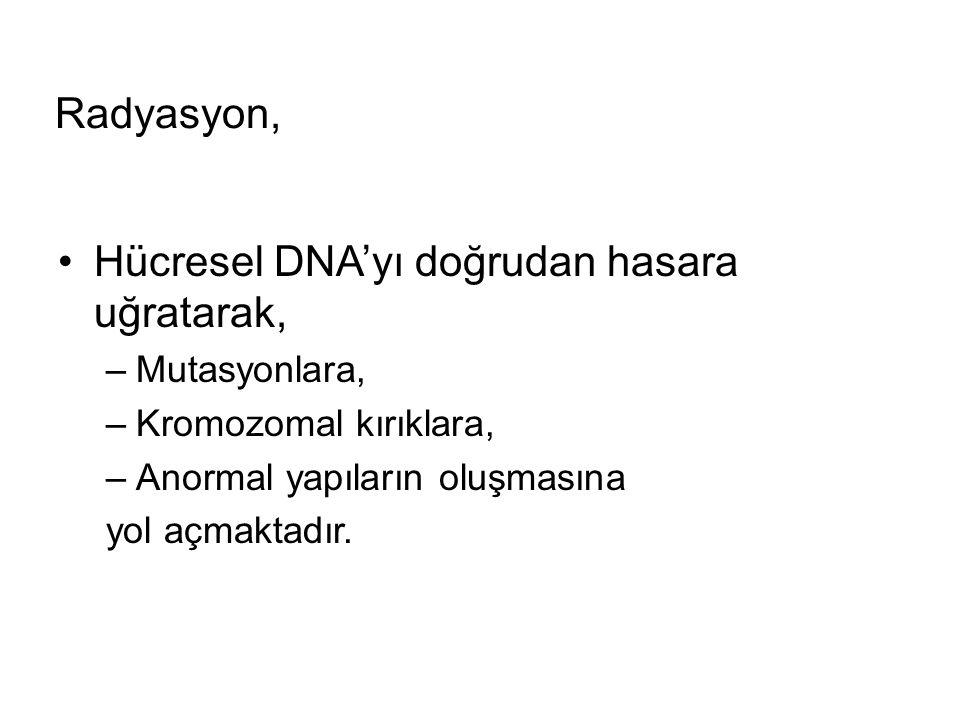 Hücresel DNA'yı doğrudan hasara uğratarak,