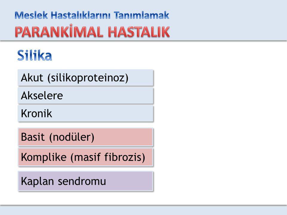 Silika Akut (silikoproteinoz) Akselere Kronik Basit (nodüler)