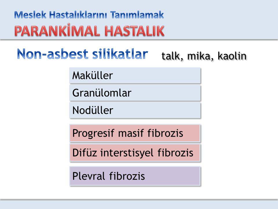 Non-asbest silikatlar