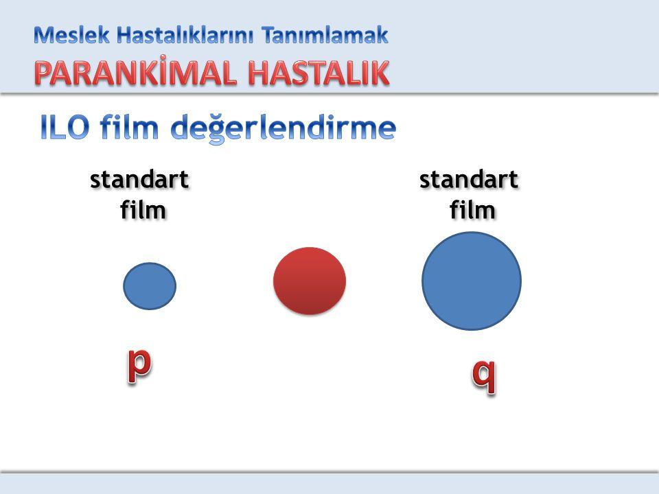 ILO film değerlendirme