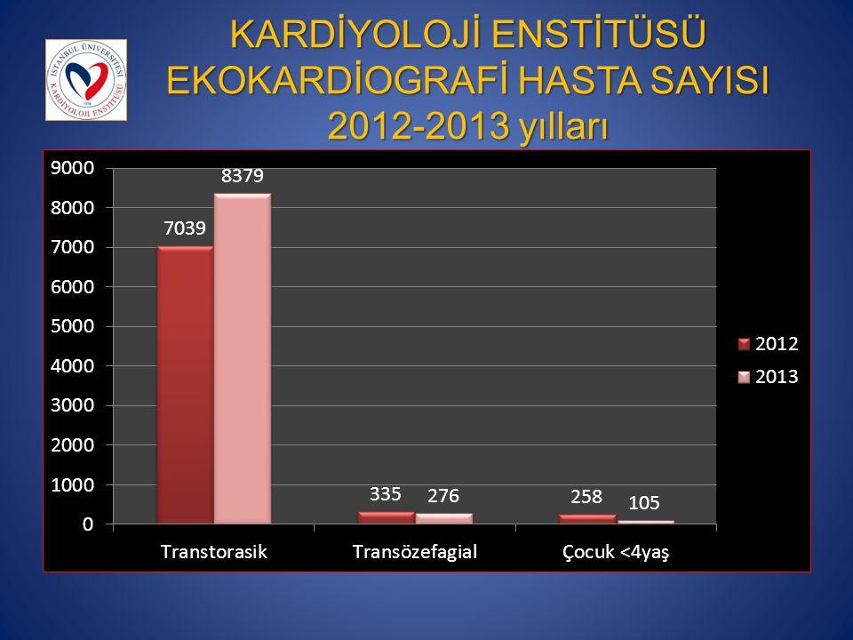 KARDİYOLOJİ ENSTİTÜSÜ EKOKARDİOGRAFİ HASTA SAYISI 2012-2013 yılları