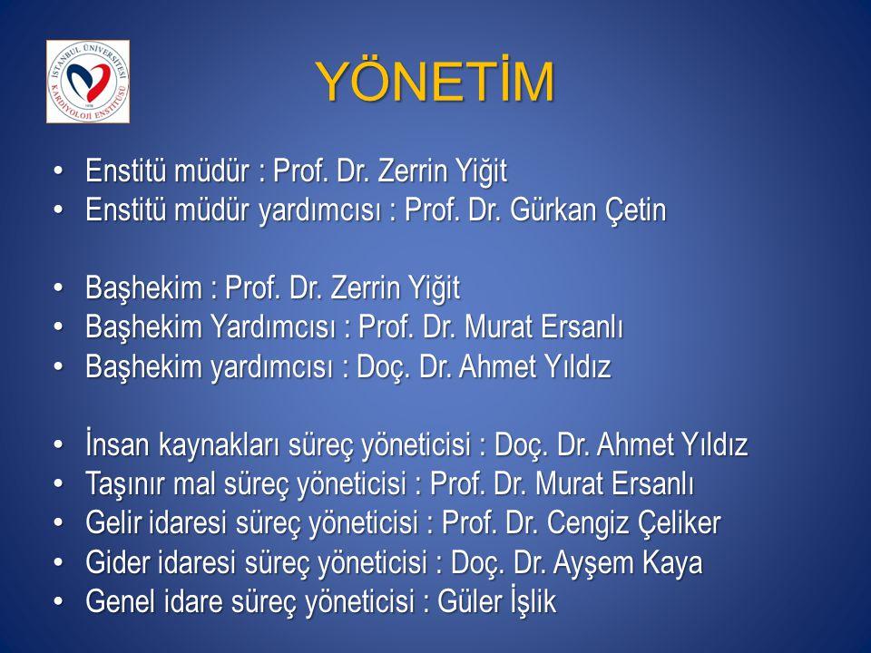 YÖNETİM Enstitü müdür : Prof. Dr. Zerrin Yiğit
