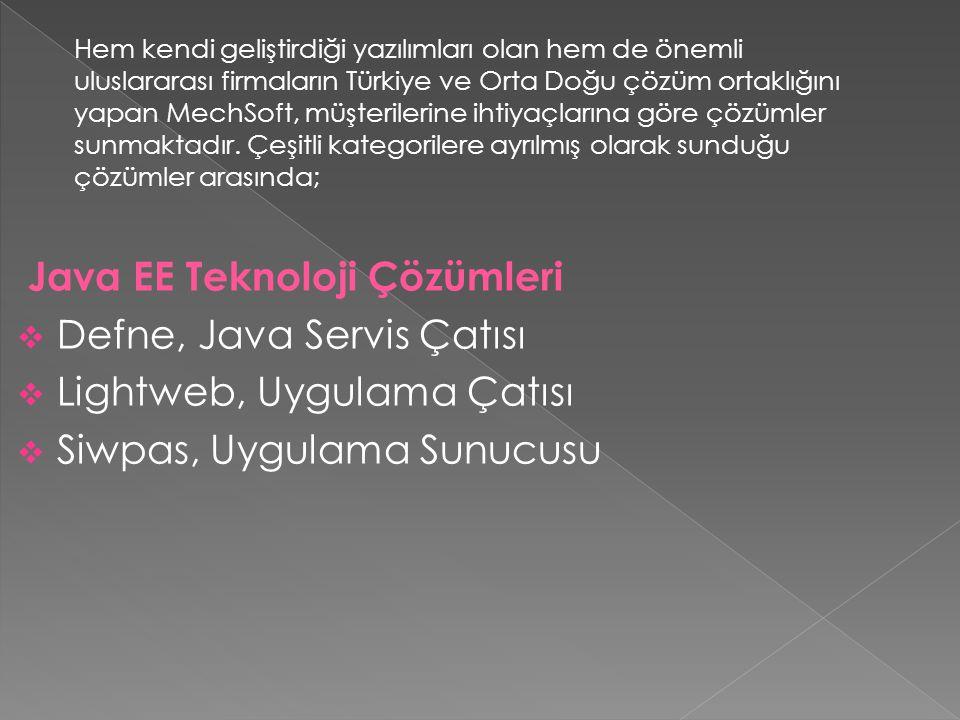 Java EE Teknoloji Çözümleri Defne, Java Servis Çatısı