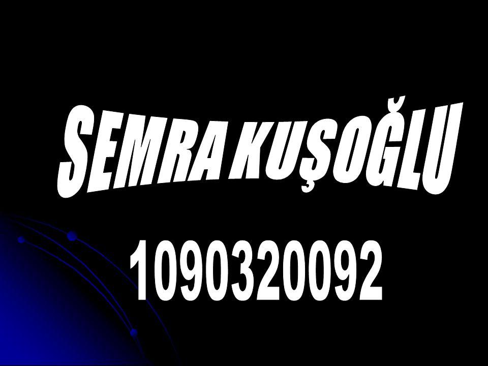 SEMRA KUŞOĞLU 1090320092