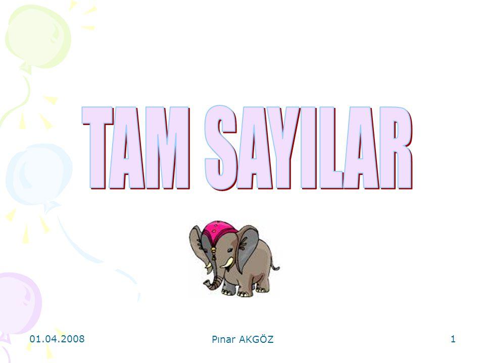 TAM SAYILAR 01.04.2008 Pınar AKGÖZ
