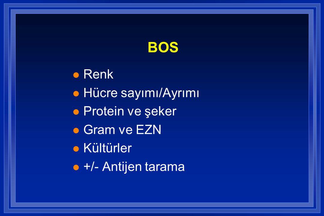 BOS Renk Hücre sayımı/Ayrımı Protein ve şeker Gram ve EZN Kültürler