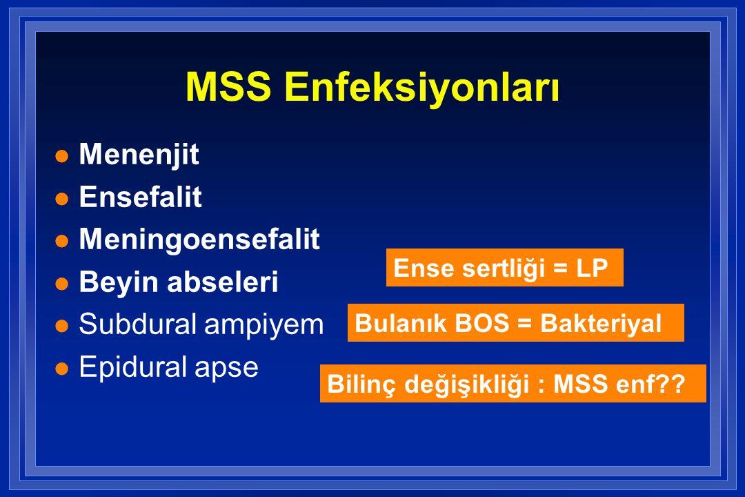 MSS Enfeksiyonları Menenjit Ensefalit Meningoensefalit Beyin abseleri