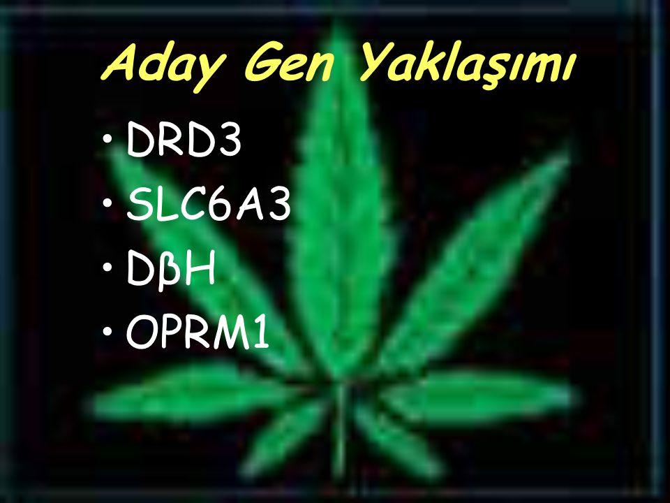 Aday Gen Yaklaşımı DRD3 SLC6A3 DβH OPRM1