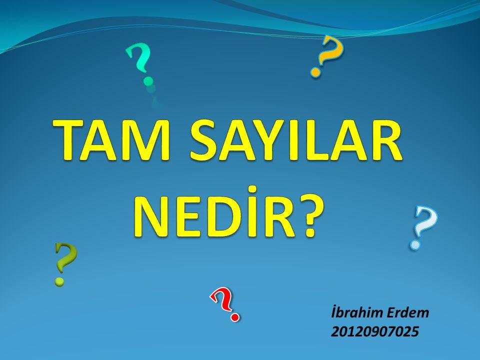 TAM SAYILAR NEDİR İbrahim Erdem 20120907025