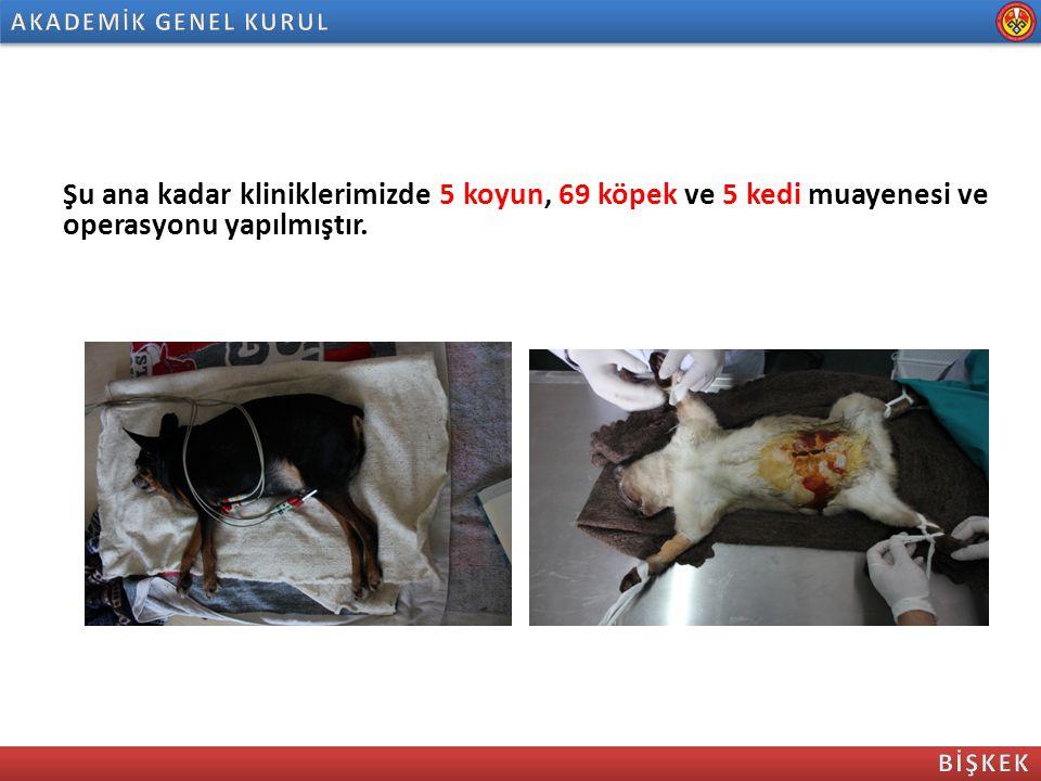 AKADEMİK GENEL KURUL Şu ana kadar kliniklerimizde 5 koyun, 69 köpek ve 5 kedi muayenesi ve operasyonu yapılmıştır.