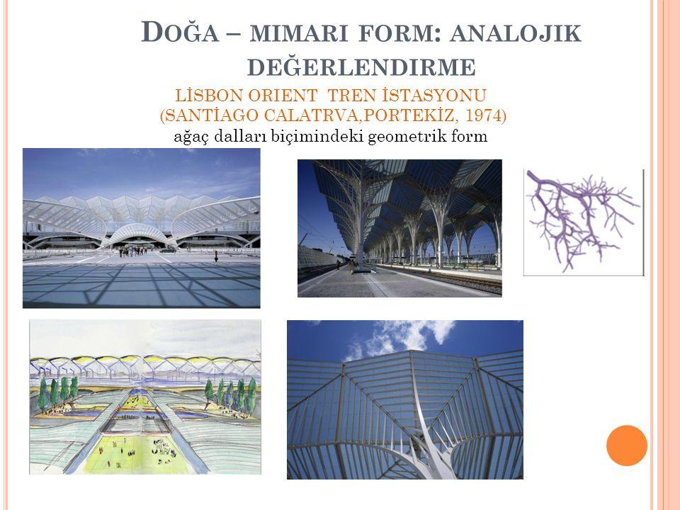 Doğa – mimari form: analojik değerlendirme