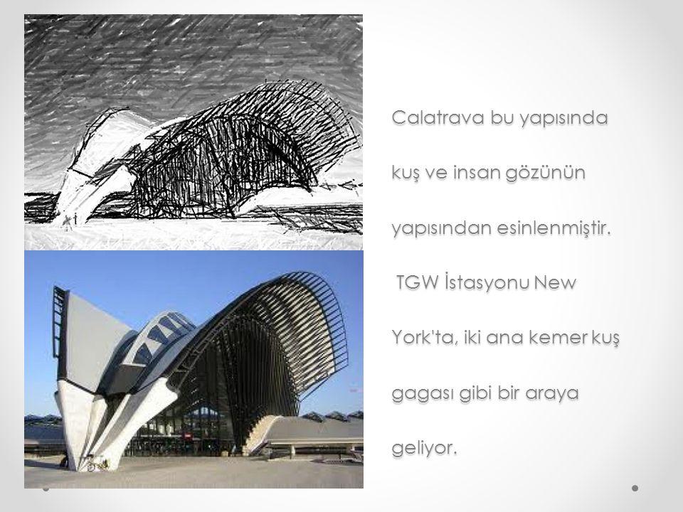 Calatrava bu yapısında kuş ve insan gözünün yapısından esinlenmiştir